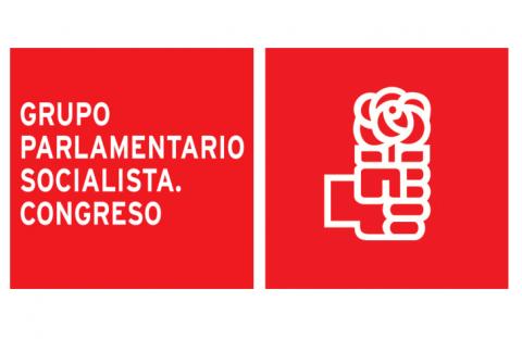 logo del grupo parlamentario socialista
