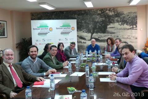 Imagen de la mesa de trabajo en un momento de la Asamblea General de la Plataforma del Tercer Sector en Extremadura.