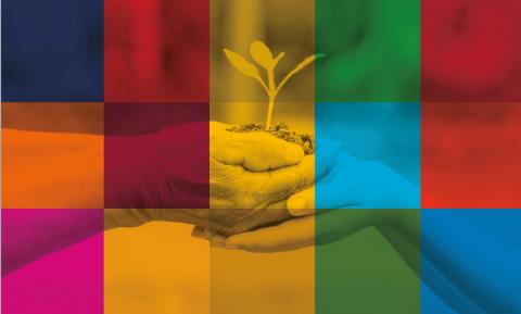 imagen de la guía ODS